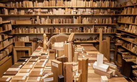 <p><span style='font-size:18px;'>Papier aus illegalem Holzeinschlag</span> <br />Den Tätern auf der Spur</span></p>