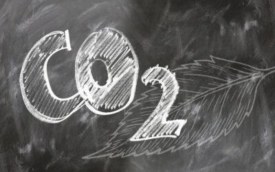 Klimawandel in der Druckbranche Nachhaltigkeit ist keine Verhandlungssache