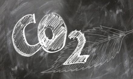 <p><span style='font-size:18px;'>Klimawandel in der Druckbranche</span> <br />Nachhaltigkeit ist keine Verhandlungssache</span></p>