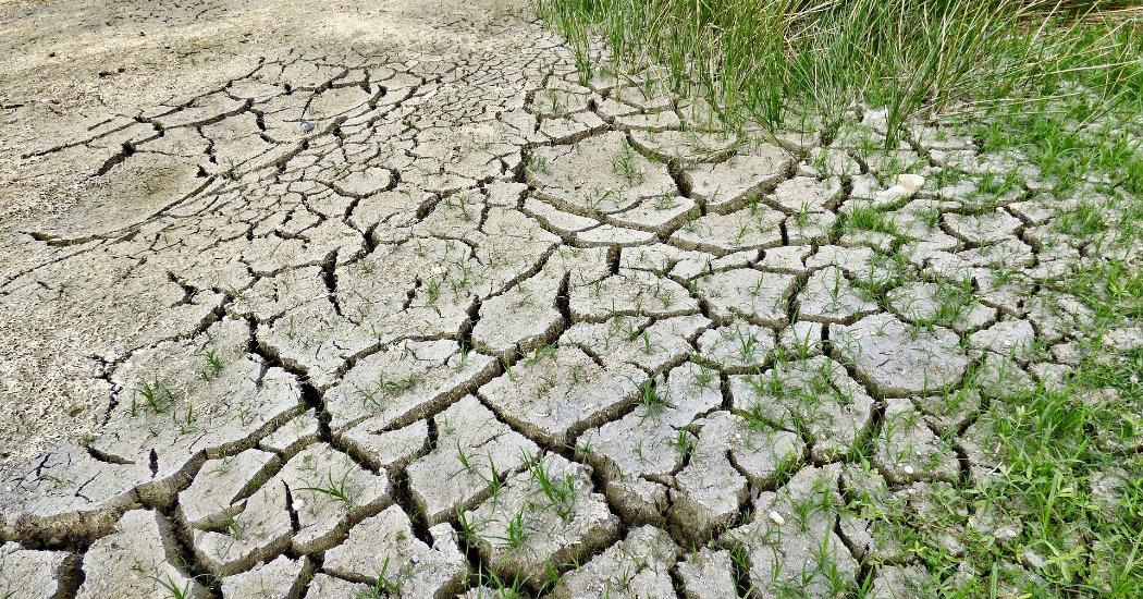 Dürren in Deutschland. Effektiver Klimaschutz