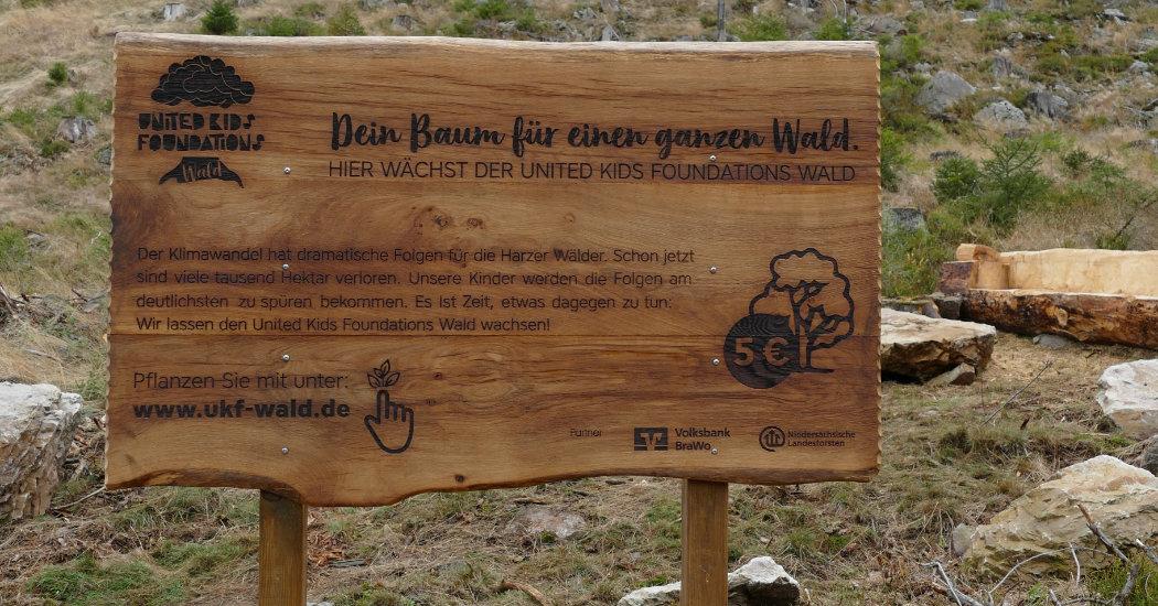 Kids Foundations Wald
